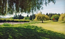 Nine-Hole Round of Golf for Two or Four with Pull Carts and Range Balls at Eaglequest Nanaimo (Up to 54% Off)