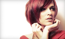 Salon Services at Aziza's Salon and Spa in Palo Alto (Up to 61% Off). Three Options Available.