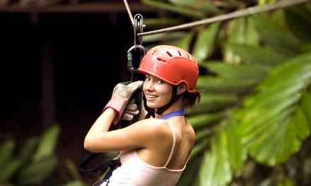 [Ziplining and Rock-Climbing Adventure for One, Two, or Four from Vertical World Adventures (Up to65% Off) Image]
