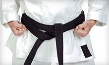 $40 for One Month of Unlimited Tang Soo Do Classes at Khalid's Martial Arts ($80 Value)