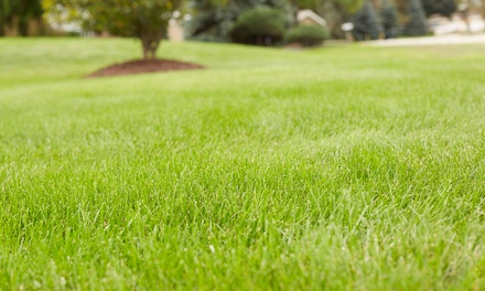 $65 for a Landscaping Package with Lawn Aeration, Organic Fertilizer & Overseeding ($120 Value)