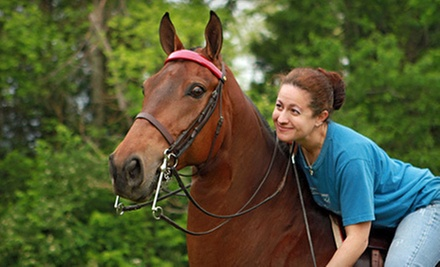 3, 5, or 10 30-Minute Horseback-Riding Lessons at Showtime Saddlebreds and Academy (Up to 57% Off)