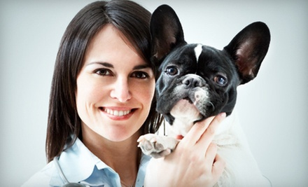 $30 for $65 Worth of Veterinary and Grooming Services at Cherokee Animal Clinic 
