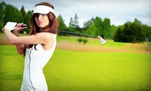 One or Three 60-Minute Private Golf Lessons with Swing Analysis and Digital Recording at GolfSmarts (Up to 69% Off)