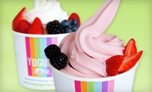 Frozen Yogurt at Yogurt Zone (Half Off). Two Options Available.