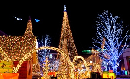 Christmas Light Show & Hayride for Two, Four, or Six at Pettit Creek Farms (Up to 47% Off)