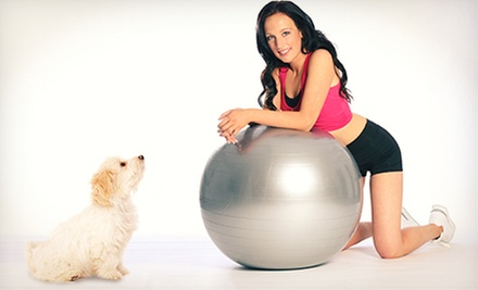 6 or 12 Fitness Classes for Dog Owners at Top Dog Fitness (Up to 73% Off)