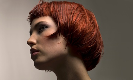 Haircut, Style, and Blow-Dry with Highlights or Single-Process Color at Hair Design by Brigitte (Up to 53% Off)