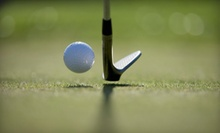 18-Hole Round of Golf for Two or Four with Cart Rental at Salt Creek Golf Club in Wood Dale (Up to Half Off)