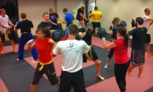 10 or 20 Krav Maga Classes at Silverback Academy (Up to 75% Off)