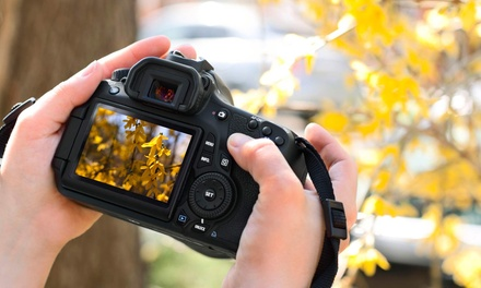 Three-Hour Photography Workshops at Gallery Photography (Up to 78% Off). Three Options Available.