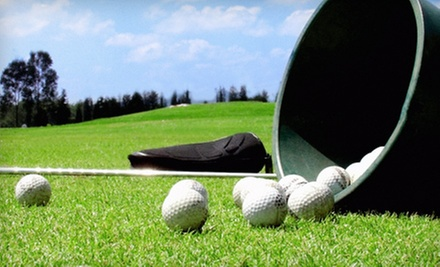 Round of Golf and Range Balls for Two or Four or Seven Buckets of Range Balls at Litl Links Golf Club (Up to 59% Off)