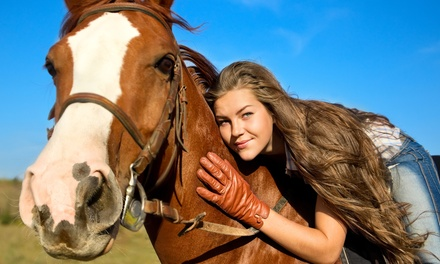 One or Three Private 45-Minute Horseback-Riding Lessons at Bellaire Farms (Up to 46% Off)