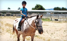 $199 for a Four-Day Kids' Horseback-Riding Summer Camp at Jeanette Arnaout Training ($400 Value)