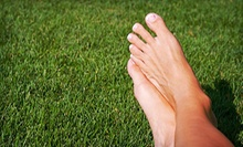 Laser Nail-Fungus Removal for One or Both Feet at Reflections Body Solutions (Up to 69% Off)