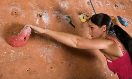 10 or 20 Rock-Climbing Visits at Vertical Adventures (Up to 53% Off)