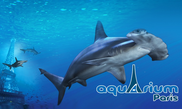 Aquarium de paris paris deal du jour groupon paris for Aquarium de paris jardin du trocadero