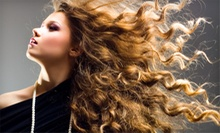 Haircut and Style or Partial Highlights and Style at Ringolevio Salon (Up to 53% Off)