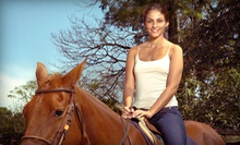 Horseback-Riding Lessons at McDaniel Training Center (Up to Half Off). Three Options Available.