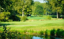18 Holes with Cart Rental ($42 Value)