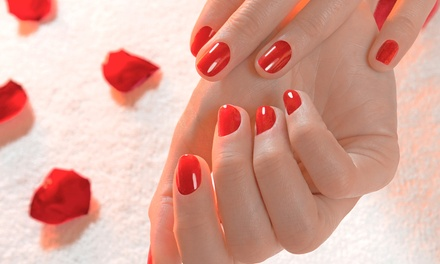 One, Two, or Three Spa or Shellac Manicures at Ziyan Salon & Spa (Up to 54% Off)