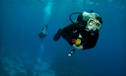 Scuba- or Nitrox-Certification Class at Scuba Haven (Up to 54% Off)