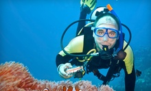 Discover Scuba Course for One or Two at Scuba and Snorkel Center and Motor City Scuba (Up to 59% Off)