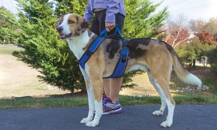 EasySport Dog Harness by PetSafe
