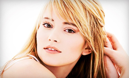 $69 for a Haircut, Partial Highlights, and Style from Bailey Gartner at Elevate Salon ($173 Value)
