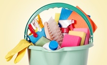 $10 for $20 Worth of Cleaning and Home Supplies at The Cleaning Mart