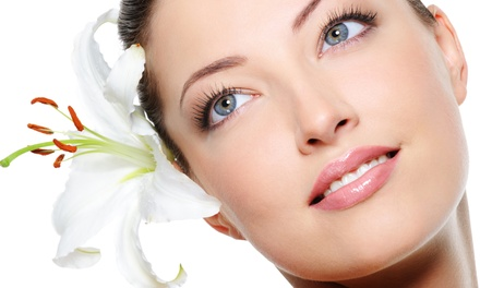 European Facial, or One or Two Anti-Aging Microphototherapy Facials at Videll's Day Spa (Up to 71% Off)