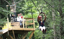 Mid-Mountain Canopy Tour or $50 Gift Voucher from New York Zipline Adventure Tours at Hunter Mountain (Up to 30% Off)