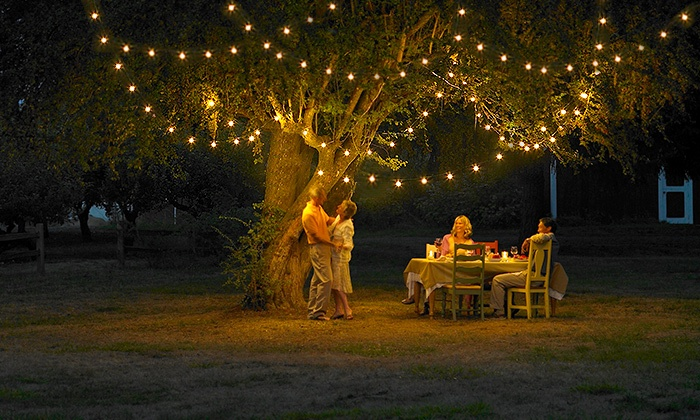 Groupon Goods: $24 Solar-Powered LED Fairy Lights in a Choice of Colours, Includes Nationwide Delivery ($59.95 Value)
