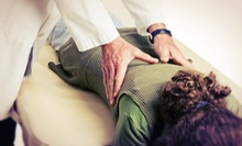 Chiropractic Package with One or Three 60-Minute Massages at Orchard Square Chiropractic (Up to 86% Off)