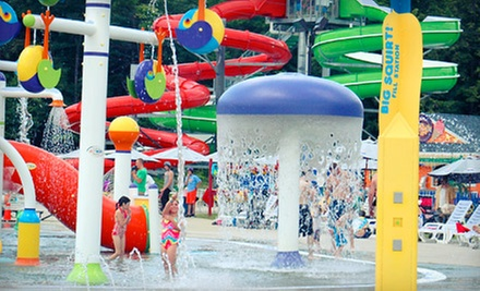$18 a One-Day Water-Park Visit with a Zipline Ride and Mini Golf at Liquid Planet Water Park (Up to $39 Value)