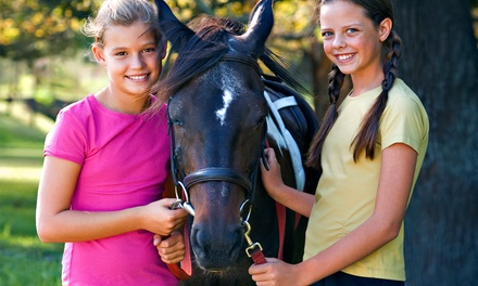 Private Horseback-Riding Lesson or Day Camp at Gallop Again (Up to 53% Off)