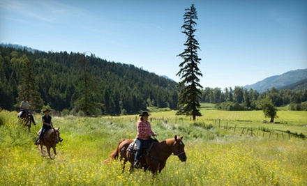 $589 for Two-Night All-Inclusive Horseback-Riding Vacation for Two at Tod Mountain Ranch ($980 Value)
