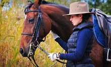 Two-Hour Horseback-Riding Lesson for One or Two at Two Hats Training Stable (Up to 57% Off)