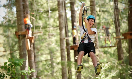 Adventure Park Package with Zip Lines for One or Two at Tree to Tree Adventure Park (Up to 34% Off)
