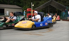 Two or Four Go-Kart Races or Mini-Golf Round for Four at Lake Nepessing Golfland (Up to 53% Off)