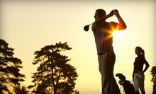 $119 for Two 60-Minute TrackMan Golf-Swing Analysis Sessions at nonstopGOLF ($258 Value)