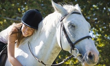 Two or Four 45-Minute Private Horseback-Riding Lessons at Creekwood Farm (Up to 53% Off)