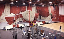 5 or 10 Indoor Rock-Climbing Sessions at Rock Fitness (Up to 55% Off)