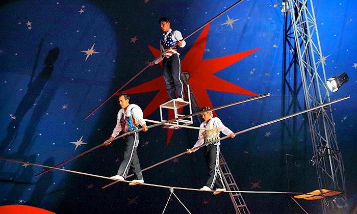 Santus Circus - Hounslow: Santus Circus Trapeze Show: Front Tier Ticket for £7 at Rectory Farm, Hounslow (50% Off)