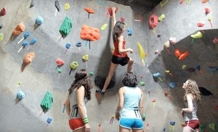 Intro Bouldering or Top-Rope Climbing Class, or 10 Climbing Passes with Rentals at Brooklyn Boulders (Up to 58% Off)