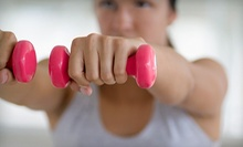 $59 for One Month of Unlimited Boot Camp with Nutritional Consultation from Michigan Women Boot Camp ($274 Value)