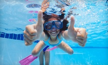 Four Group or Private Swim Lessons at Little Dipper Aquatic Center (Up to 57% Off)