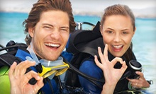 $29 for a Discover Scuba Lesson at AquaSub Scuba Diving Centre ($60 Value)