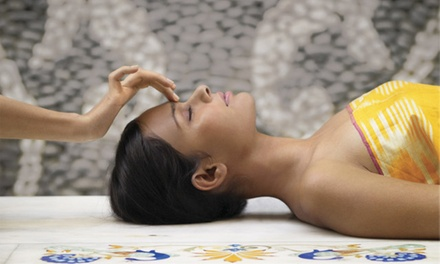 Elemental Nature Facials at Earth Aveda Salon and Spa (Up to 59% Off. Three Options Available.