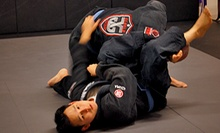 Two or Four Months of Unlimited Adult or Kids' Jujitsu Classes at Gloglo Brazilian Jiu-Jitsu Academy (Up to 76% Off)
